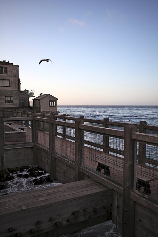 Monterey-web.jpg